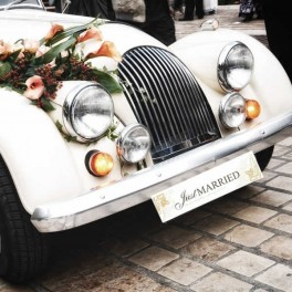Placa Matricula Just Married